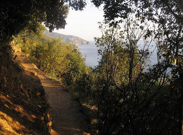 Hiking Via Dell'Amore Loves Way